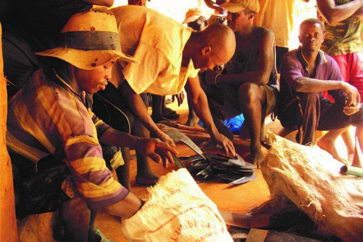 Etude d'évaluation et de capitalisation du programme de développement Local de la Région de Kolda (Sénégal)